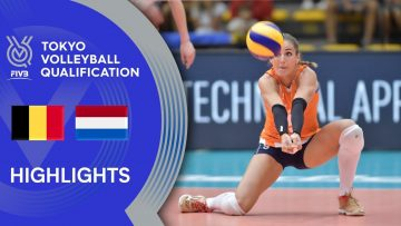 BELGIUM vs. NETHERLANDS – Highlights Women | Volleyball Olympic Qualification 2019